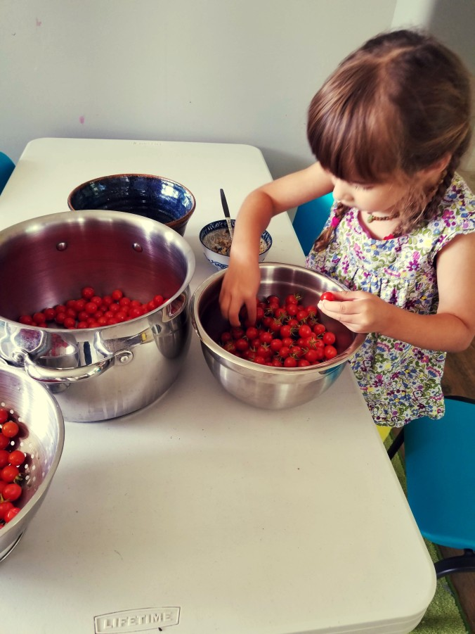 children helping with tomatoes